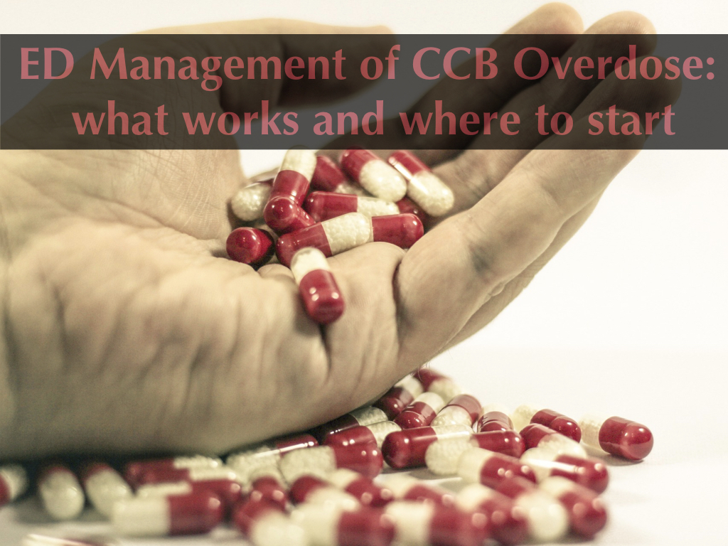 ED Management of CCB Overdose: what works and where to start