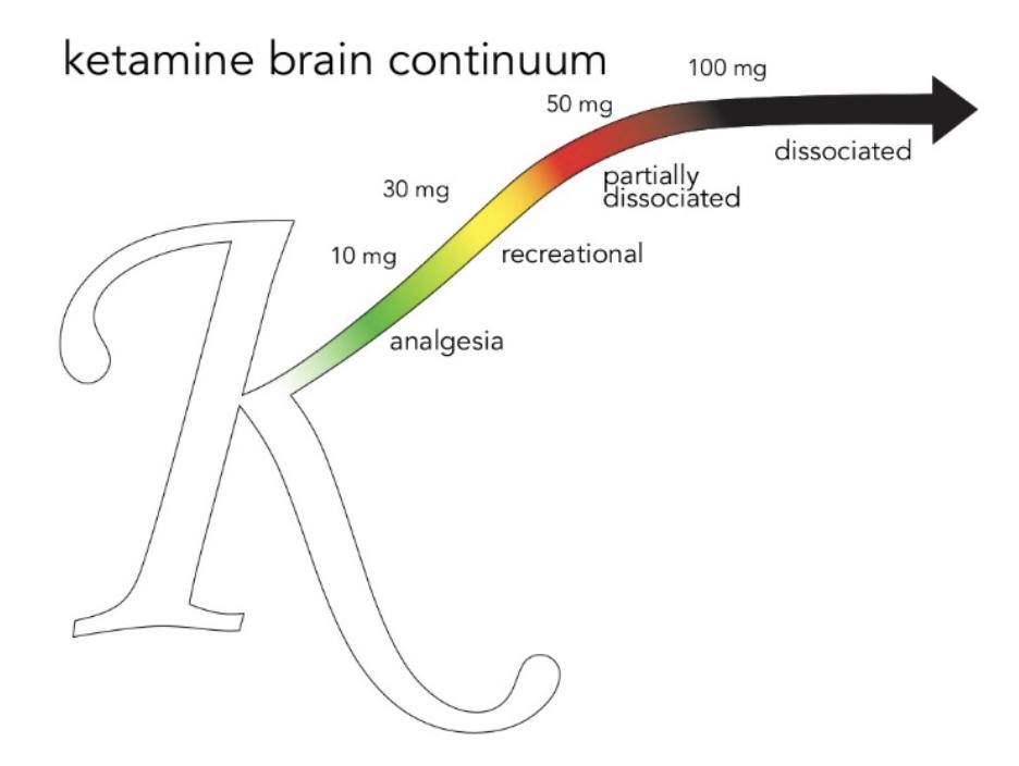 Ketamine Brain Continuum